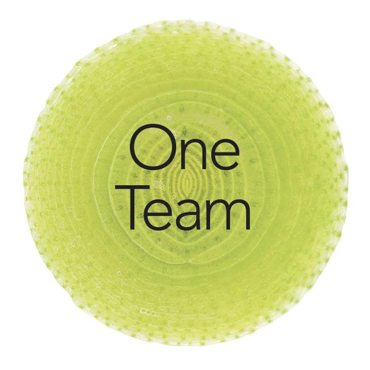 oneteam1