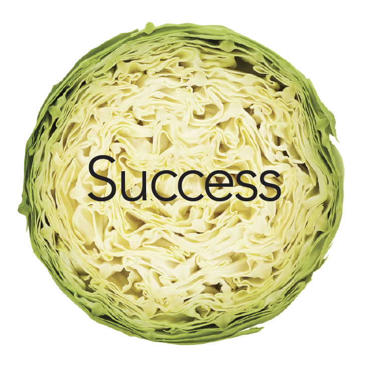 success1b